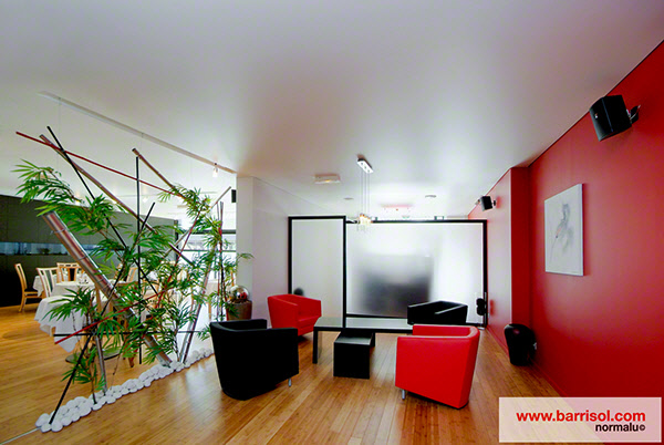 barrisol star. Black Bedroom Furniture Sets. Home Design Ideas