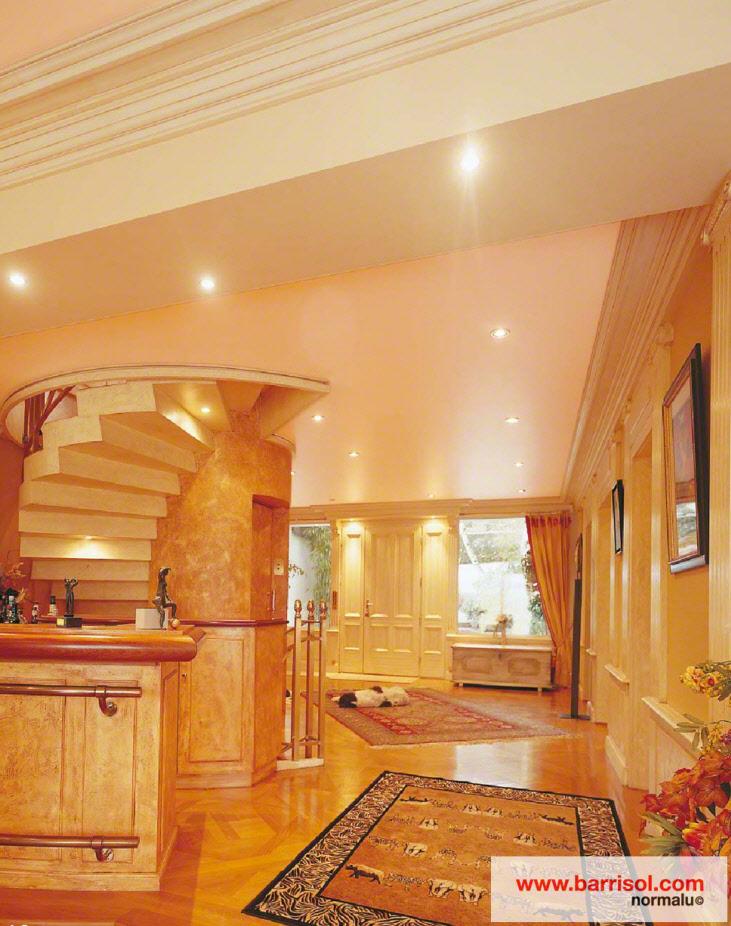 photos de plafond tendu dans des halls d entr e plafond avec spots int gr s. Black Bedroom Furniture Sets. Home Design Ideas