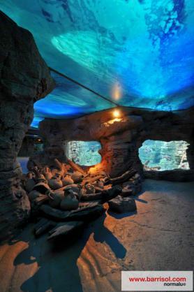 Aquarium von Palma de Mallorca