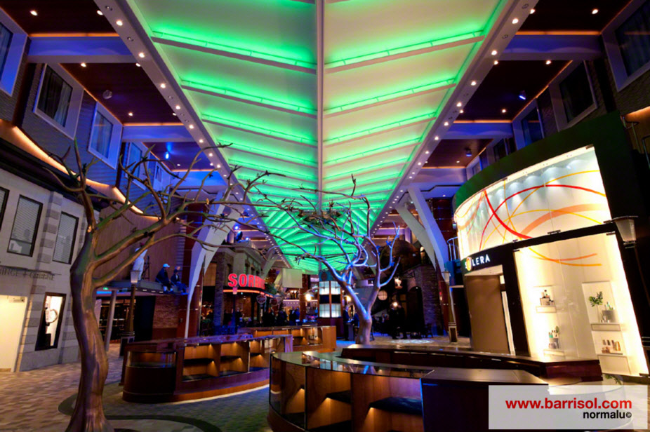 Paquebot Oasis of the Seas <br><p style='text-transform: uppercase; color: #6F6F6F;'>Finland</p>